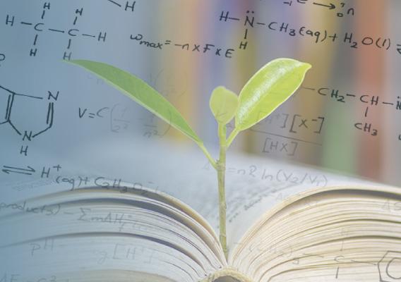 自然と科学